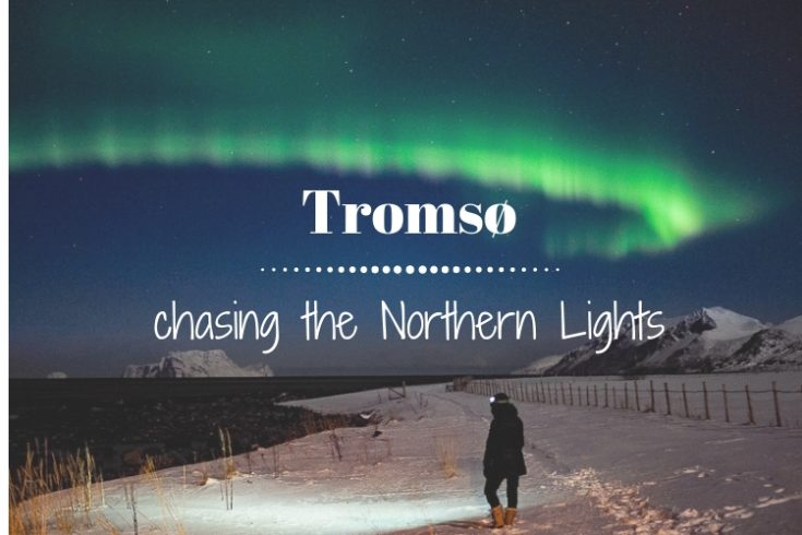 Tromso chasing the northern lights