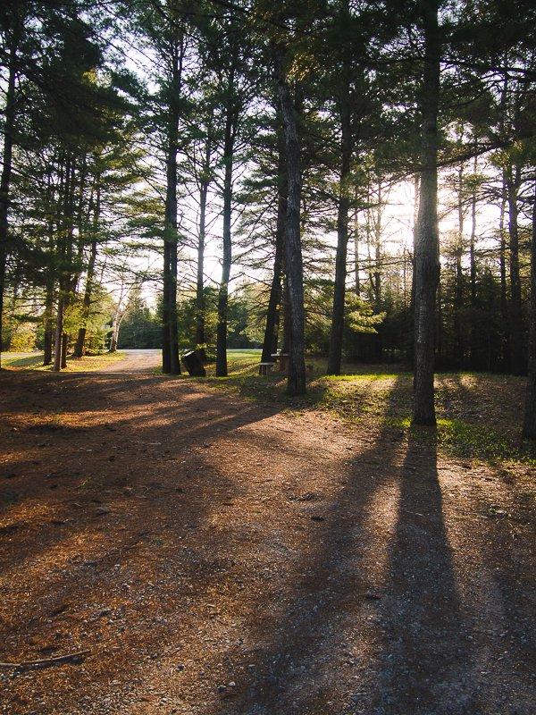 Sunset Alganquin Park Ontario Canada