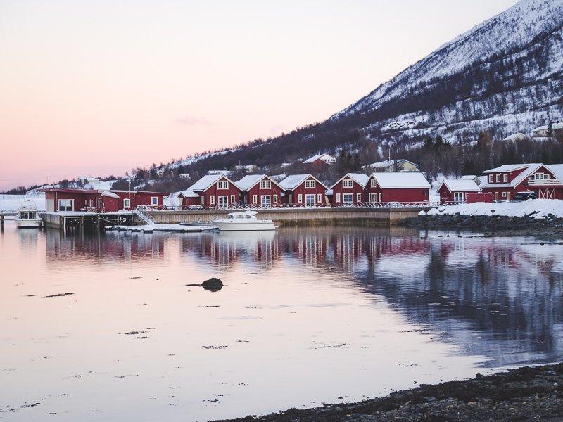 Obrazek posiada pusty atrybut alt; plik o nazwie Polowanie-na-zorze-chasing-the-northern-lights-Tromso-Norwegia-Norway-Aga-Out-Of-Office.jpg
